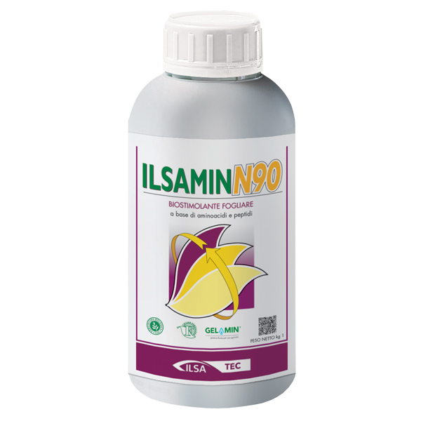 IlsaminN90
