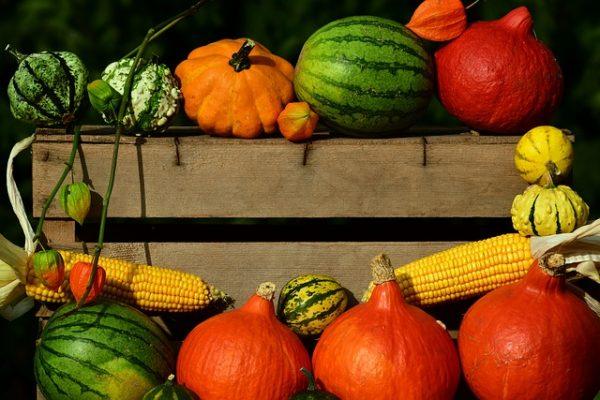 pumpkin-2691444_640
